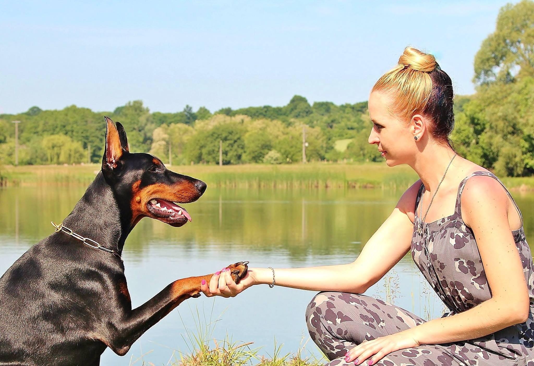 Viajar y trabajar cuidando mascotas